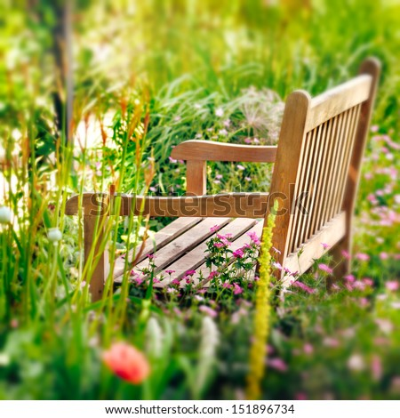 Wooden Bench in a wildflower garden. Square composition.