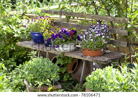 wooden bench  with flower pots in a wild garden.