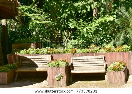 Wooden benches in the garden with green trees on sunny day. #773398201