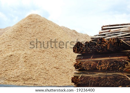 Wooden biomass chips and lumber material