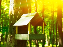 Wooden bird feeder house in the forest, sun shining through. Eco-friendly ideas for DIY for the environment