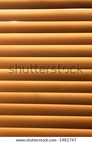 Wooden blinds, with the sun shining through