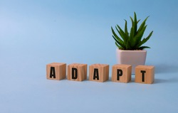 Wooden Blocks with the text: Adapt. Adaptation to changing reality business crisis management concept.
