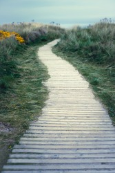 Wooden Board Path Leading Through Grassy Dunes to the Beach