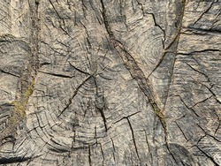 Wooden board with texture background.