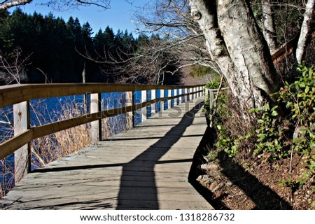 Wooden boardwalk along the shores of lake wood planks railings board material details and texture background #1318286732