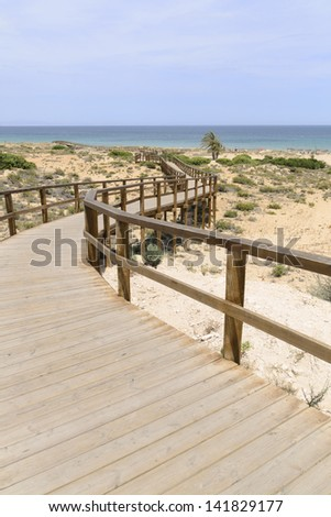 Wooden Boardwalk at Arenales del Sol beach