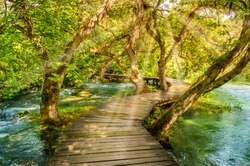 Wooden boardwalk in the green forest of Krka National Park, Croatia. Beautiful walking trail or footpath over the river near Krka waterfalls. Scene with trees and water on a sunny day with sunrays.