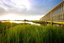 Wooden boardwalk over grassy marsh at sunset with reflection on water