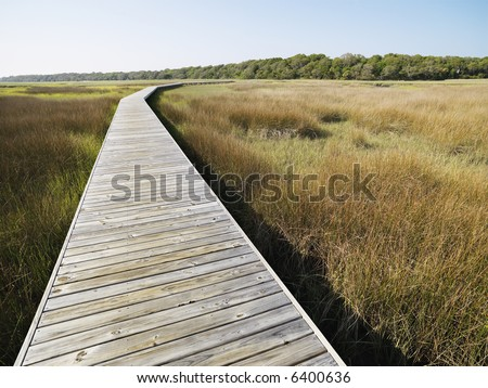 Wooden boardwalk stretching over marsh at Bald Head Island, North Carolina.