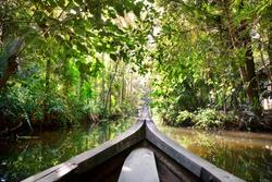Wooden boat cruise in backwaters jungle in Kochin, Kerala, India