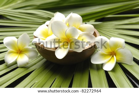Wooden bowl of plumeria on palm leaf texture