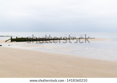 wooden breakwaters timber groynes on the beach in sand low tide #1418360210