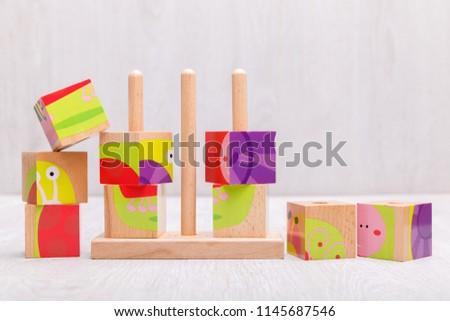 Wooden bricks with animal