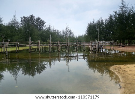 wooden bridge across a sea side pond, with pine trees and reflection from the pond.