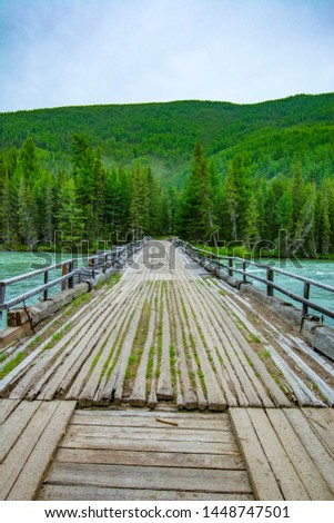 Wooden bridge across mountain stream. Altai Republic, Russia. #1448747501
