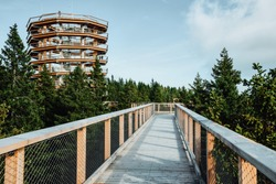 Wooden bridge and observation deck for walking through treetops. Pohorje Treetop Walk, Rogla. Slovenia, Europe.