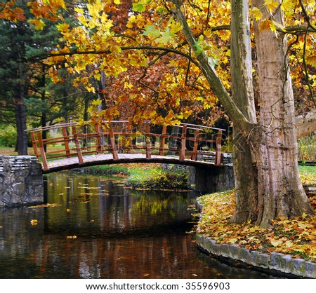 Wooden bridge at the park in autumn