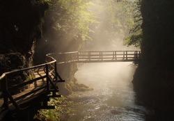 Wooden bridge during sunny morning in the Vintgar gorge, Slovenia