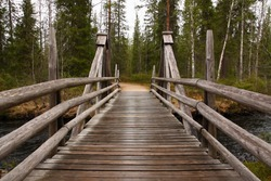 Wooden bridge in a forest along the trekking path