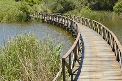 Wooden bridge in golf course lake  in Andalusia
