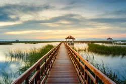 Wooden Bridge in lotus lake on sunset time at Khao Sam Roi Yot National Park, Thailand