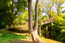 wooden bridge in nature surounded by green trees. Dendrological park. Georgia.