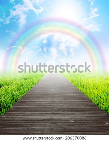 Wooden bridge in summer landscape with rainbow and blue sky, Eco background concept.