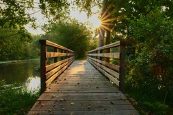 Wooden bridge in the middle of the forest. Rays of the sun through the foliage of trees. Bridge in nature in summer or spring.