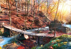 Wooden bridge in the mountain forest in autumn