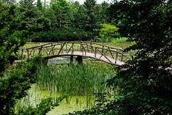 Wooden bridge installed on the park lake