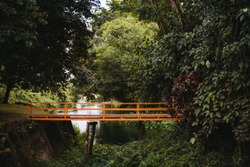 Wooden Bridge into forest with waterway in summer in side view