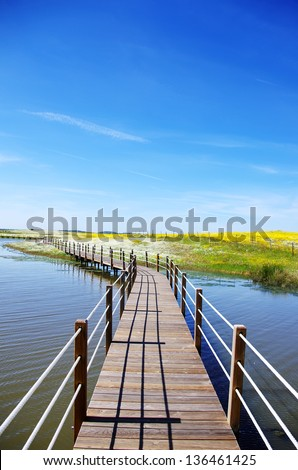 Wooden bridge into the lake of Alqueva in Alentejo, Portugal