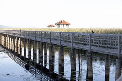 Wooden bridge pathway in the lake with blur foreground and background
