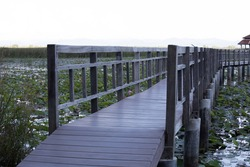 Wooden bridge , Pathway to lotus lake with blur foreground and background