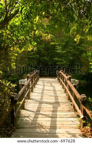 hölzerne Brücke zum Wald