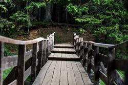 Wooden bridge to the forest at Crno Jezero, Montenegro
