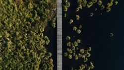 wooden bridge trough wetlands in western Europe Hautes Fagnes Belgium