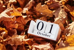Wooden calendar block with date 1 october on falling autumn leaves background