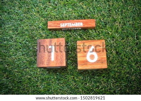 Wooden calendar on September 16 on a green grass background.World ozone day. #1502819621