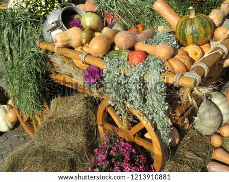 Wooden cart with pumpkins. Thanksgiving day concept, autumn harvest holiday, festive decorations with flowers, vegetables ana hay