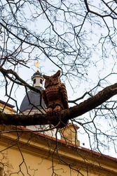 wooden carved owl sitting on tree branches