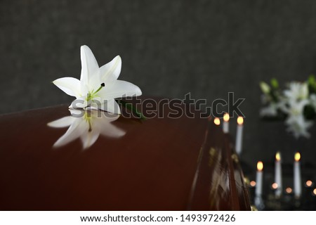 Wooden casket with white lily in funeral home, closeup. Space for text