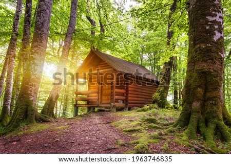 Wooden cottage in the forest near Biogradsko lake in Montenegro Foto stock ©