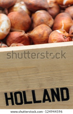 Wooden crate with Dutch flower bulbs with the text Holland