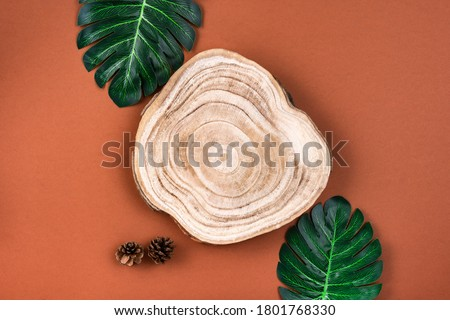 Wooden cross section cut with monstera leaves on brown surface. Showcase for cosmetic products. Natural organic eco-friendly beauty product concept. Overhead view, mockup. Product advertisement