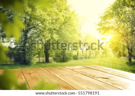 wooden desk of free space and spring time