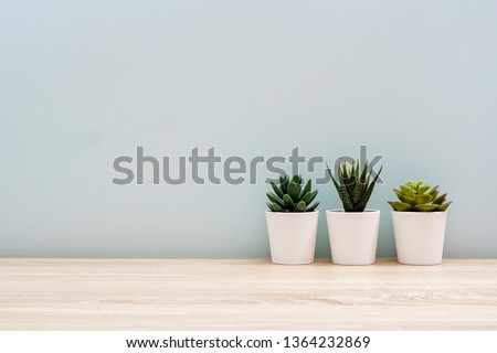 Wooden desk table top with tree pot on white wall, with copy space #1364232869