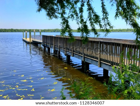 Wooden dock extending out into the St. Johns River