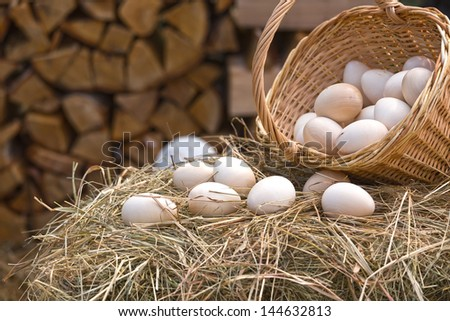 Wooden eggs in the basket and on the hay